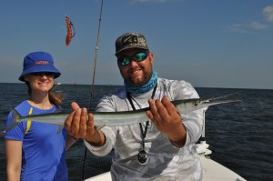 Houndfish caught with Capt. Jason Dozier of Chasing Tails charters in Tampa,Fl.