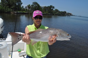A nice redfish caught with Capt. Jason Dozier of chasing tails charters