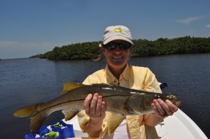 A snook caught with Capt. Jason Dozier during the PHSC tournament in 2014