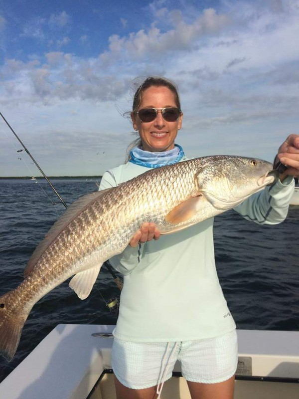Tampa bay redfish with Capt Jason Dozier