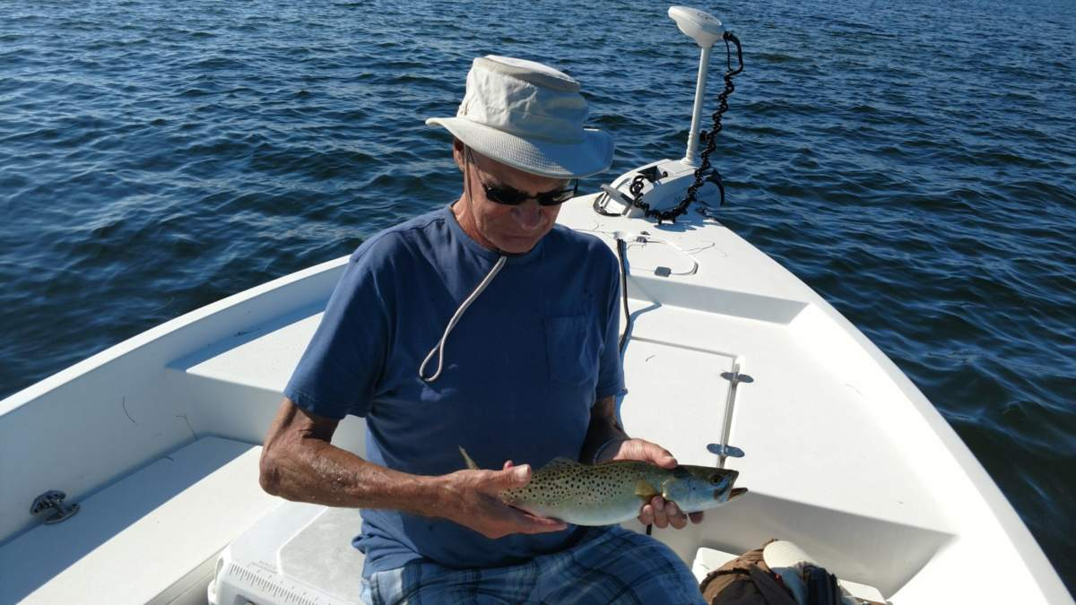 Tampa bay fishing in may report capt jason dozier for Tampa bay fishing reports