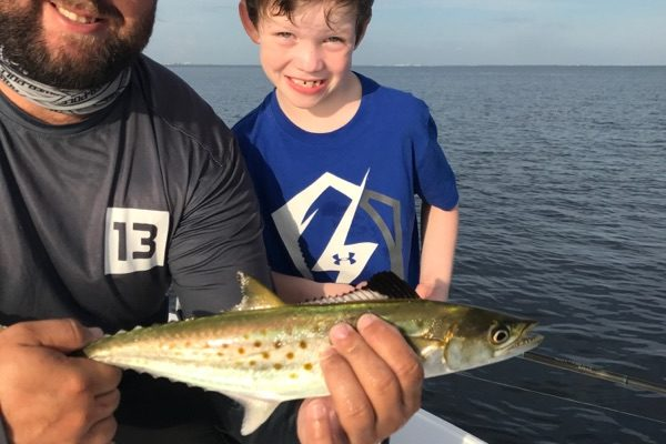 Tampa BAy Mackeral caught with Capt. Jason Dozier