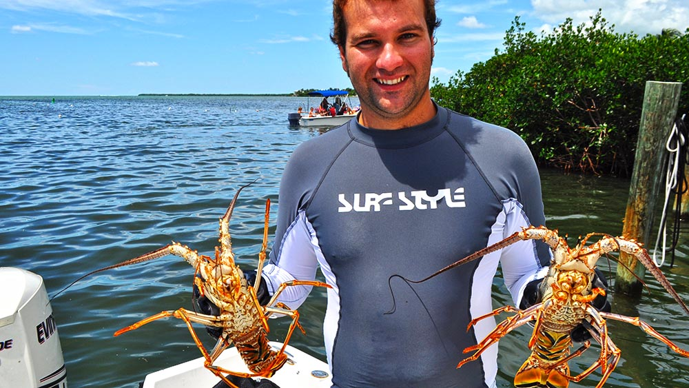 Diver with fresh caught Florida lobster